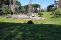 Servizio Giardini in attività 28mar19